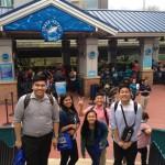 Spring Work and Travel Houston Aquarium 5